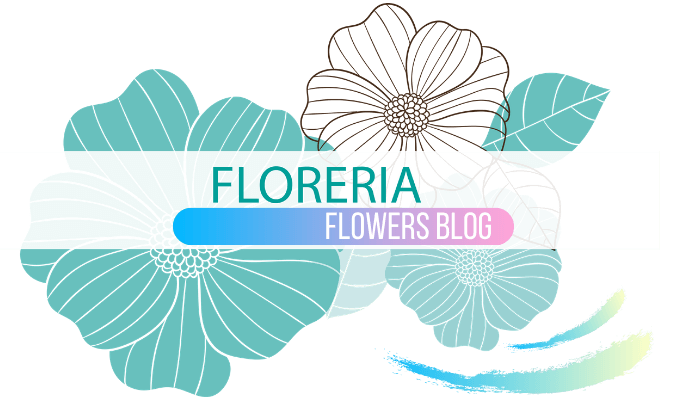 logo blog di floreria